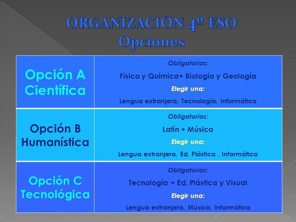 ORGANIZACIÓN 4º ESO Opciones