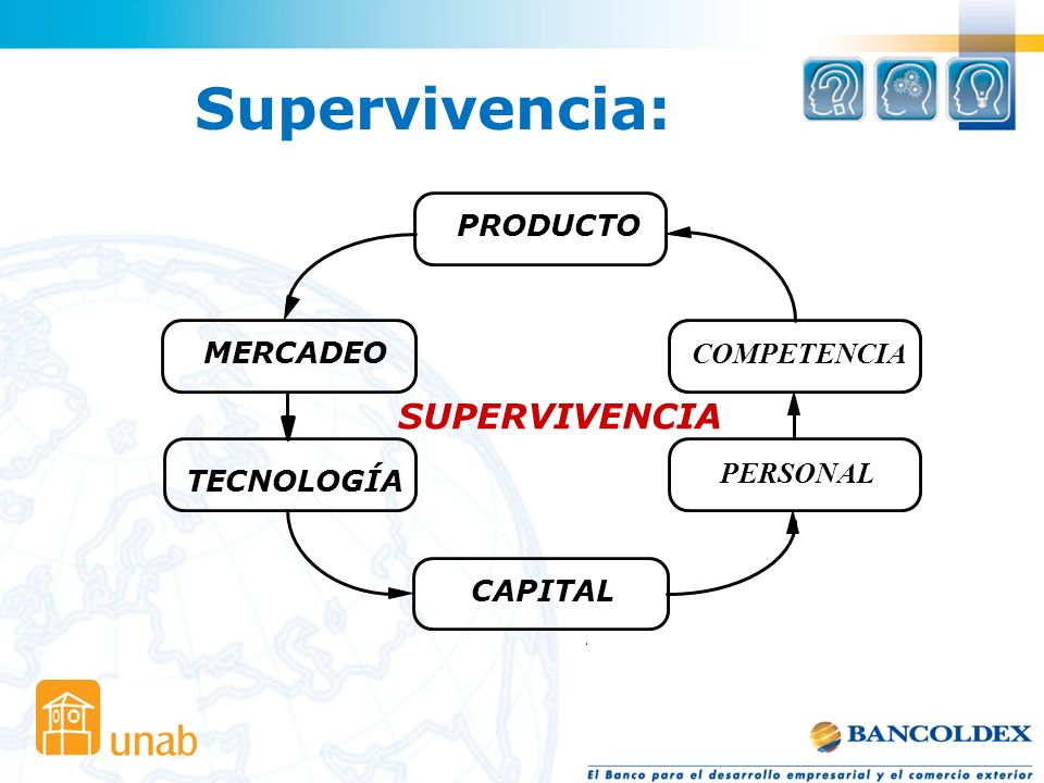 Supervivencia: SUPERVIVENCIA PRODUCTO MERCADEO COMPETENCIA PERSONAL