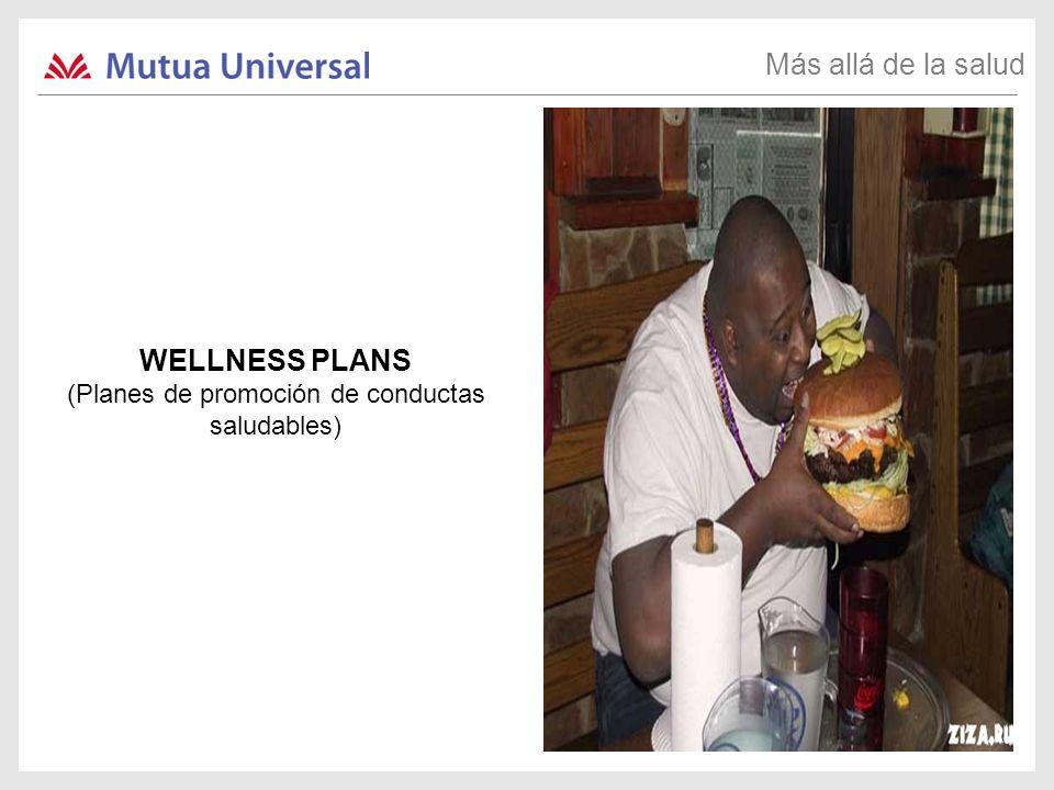 (Planes de promoción de conductas saludables)