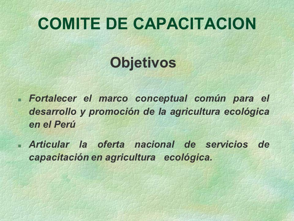 COMITE DE CAPACITACION