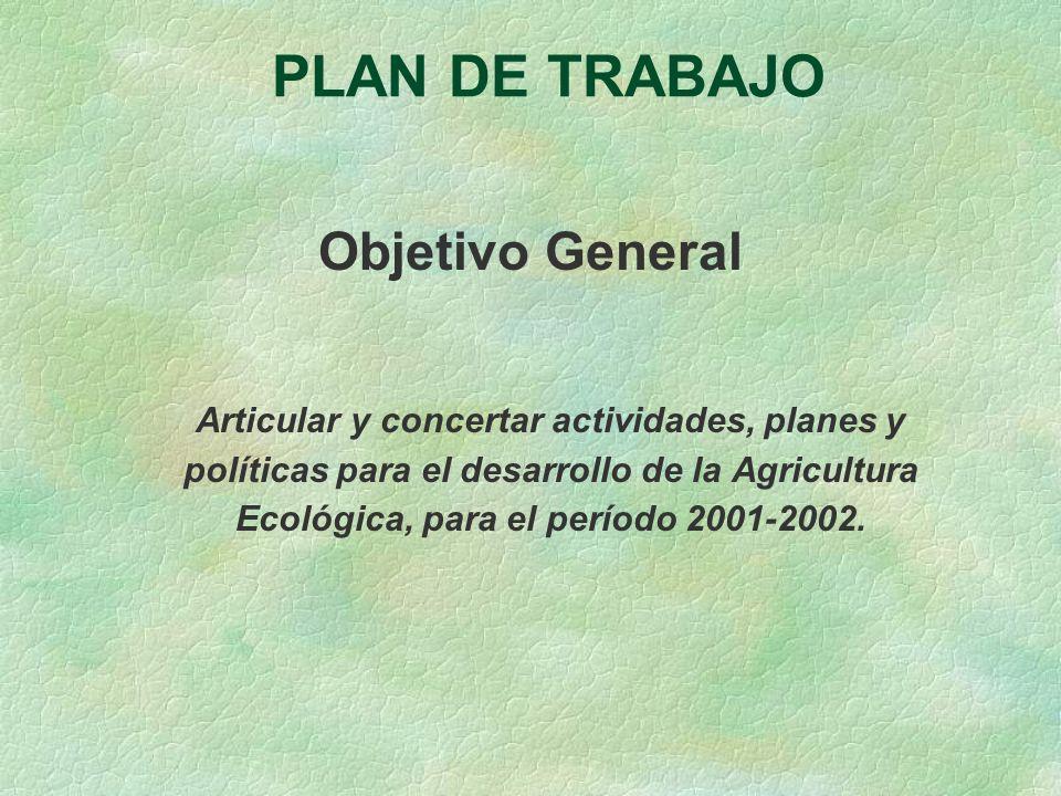 PLAN DE TRABAJO Objetivo General