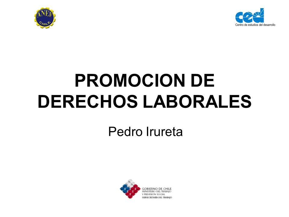PROMOCION DE DERECHOS LABORALES