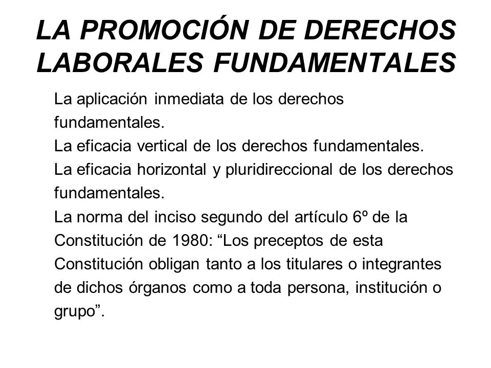 LA PROMOCIÓN DE DERECHOS LABORALES FUNDAMENTALES
