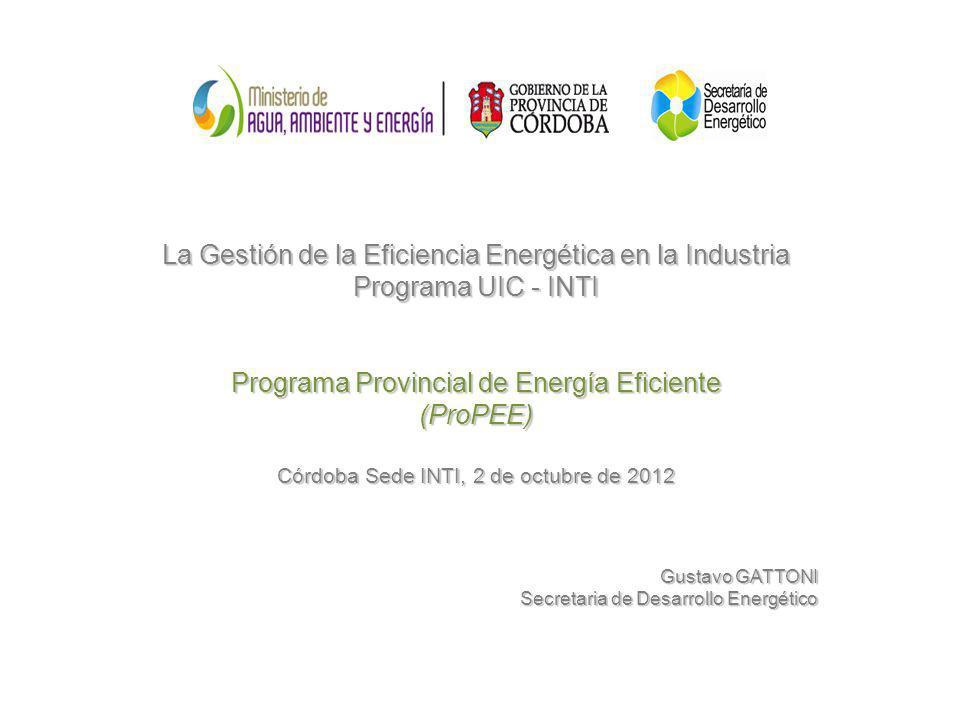 La Gestión de la Eficiencia Energética en la Industria