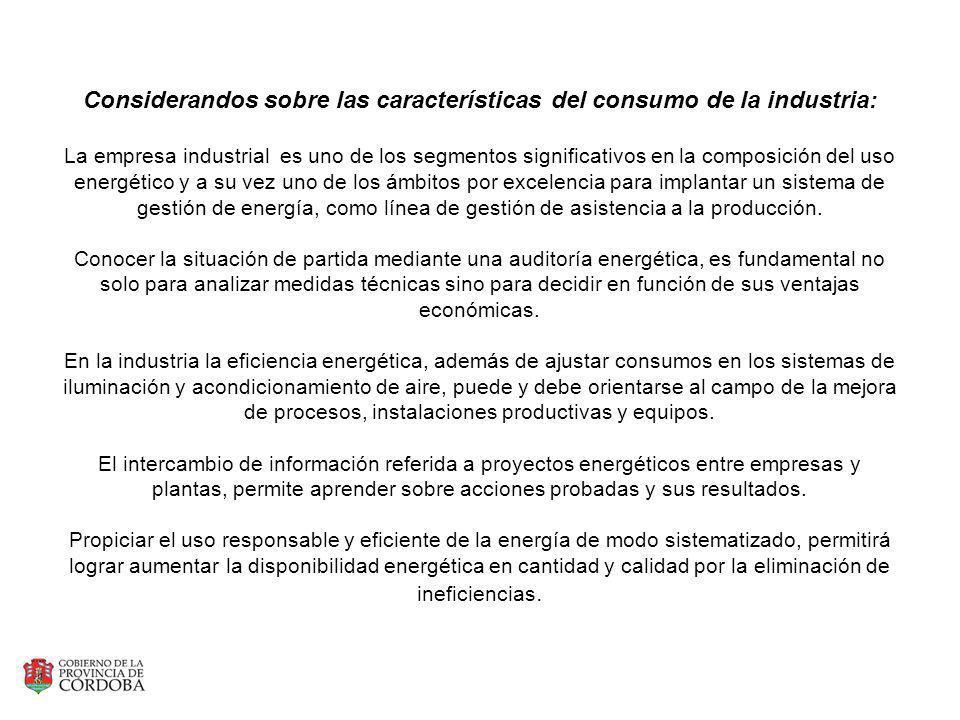 Considerandos sobre las características del consumo de la industria: