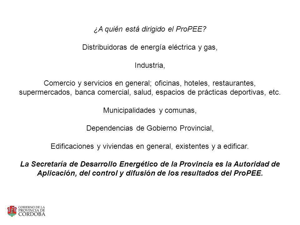 ¿A quién está dirigido el ProPEE