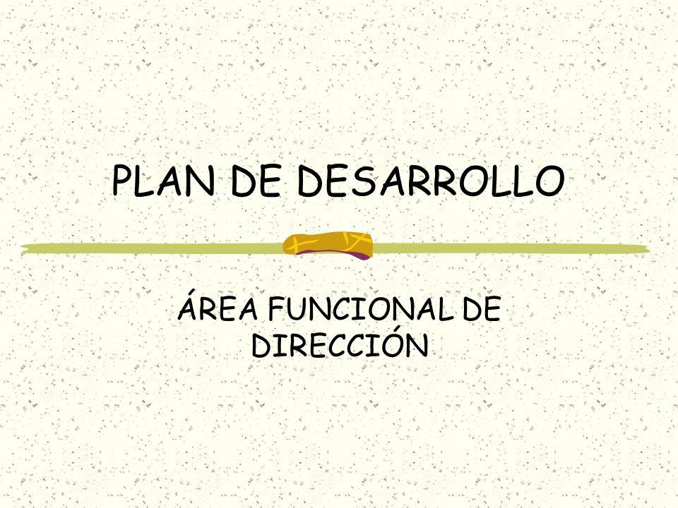 ÁREA FUNCIONAL DE DIRECCIÓN