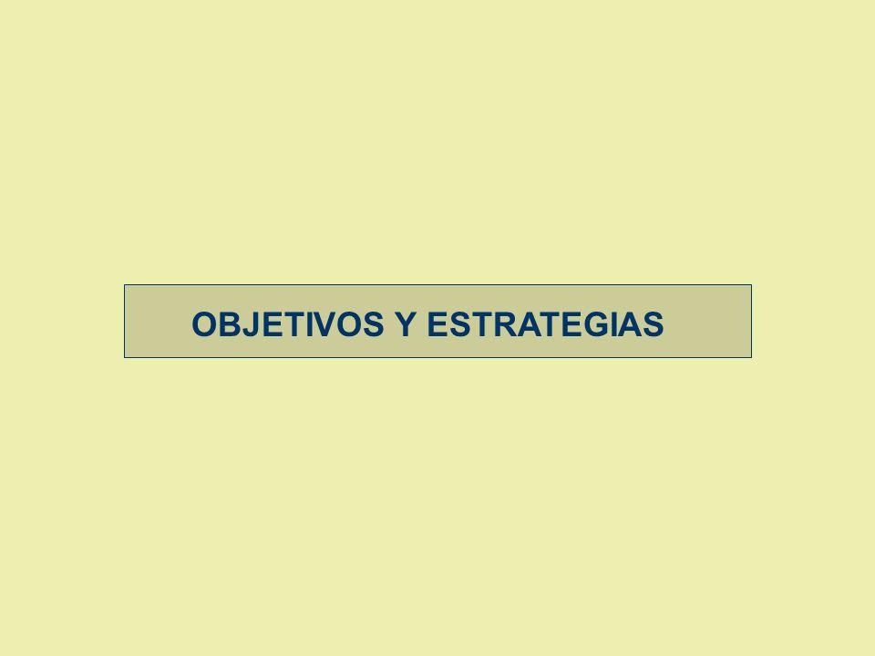 OBJETIVOS Y ESTRATEGIAS