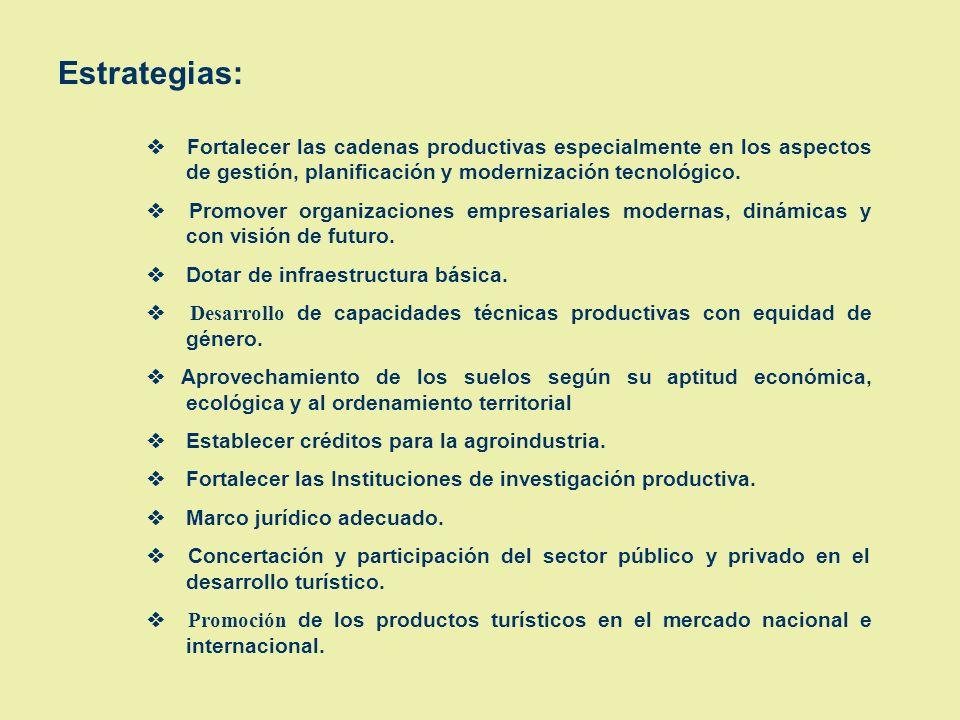 Estrategias: v Fortalecer las cadenas productivas especialmente en los aspectos de gestión, planificación y modernización tecnológico.