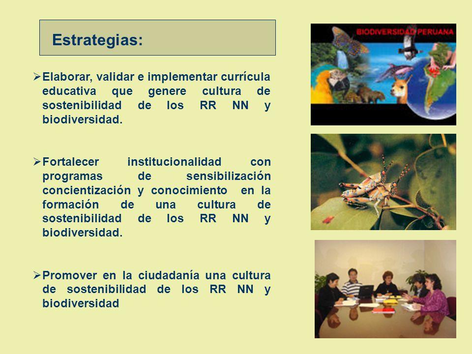 Estrategias: Elaborar, validar e implementar currícula educativa que genere cultura de sostenibilidad de los RR NN y biodiversidad.