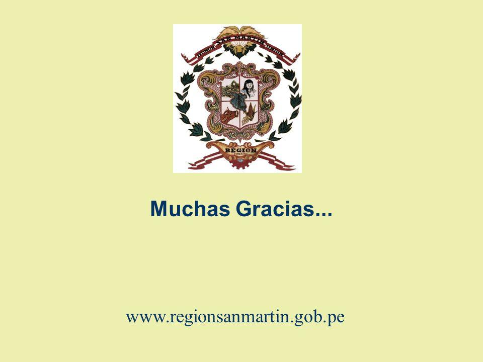 Muchas Gracias... www.regionsanmartin.gob.pe