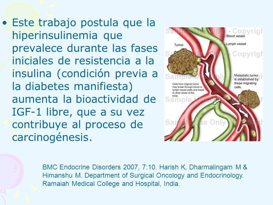 Este trabajo postula que la hiperinsulinemia que prevalece durante las fases iniciales de resistencia a la insulina (condición previa a la diabetes manifiesta) aumenta la bioactividad de IGF-1 libre, que a su vez contribuye al proceso de carcinogénesis.