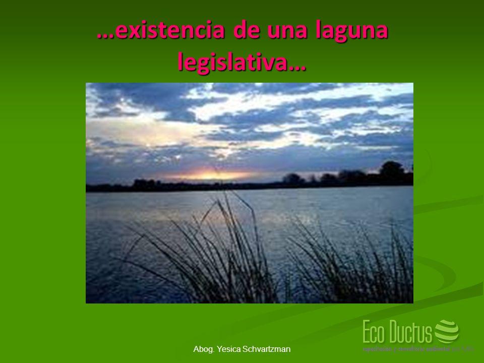 …existencia de una laguna legislativa…