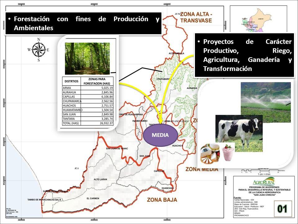 Forestación con fines de Producción y Ambientales