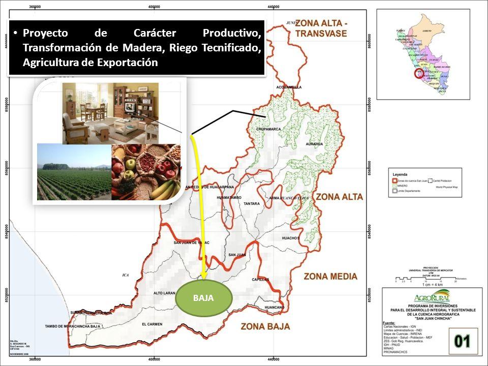 Proyecto de Carácter Productivo, Transformación de Madera, Riego Tecnificado, Agricultura de Exportación