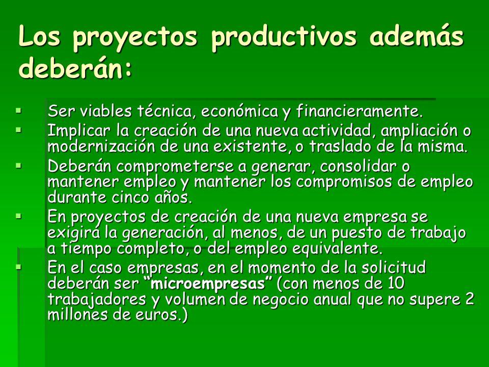 Los proyectos productivos además deberán:
