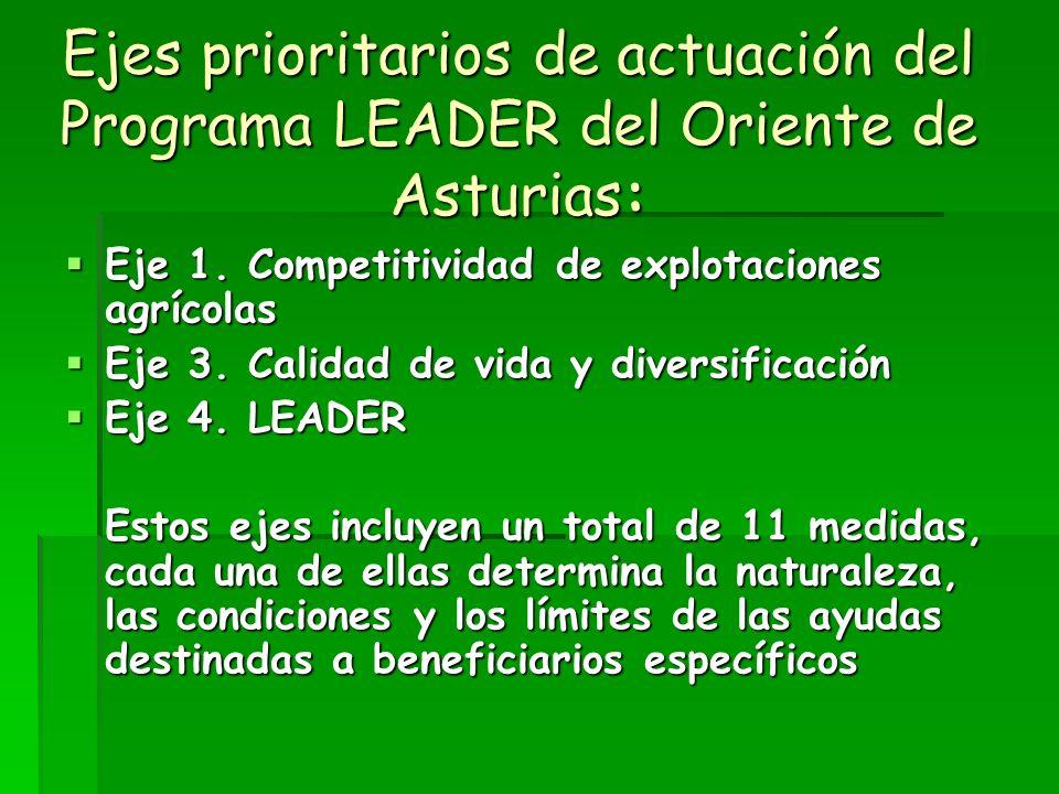 Ejes prioritarios de actuación del Programa LEADER del Oriente de Asturias: