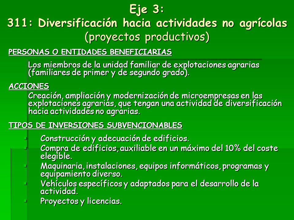 Eje 3: 311: Diversificación hacia actividades no agrícolas (proyectos productivos)