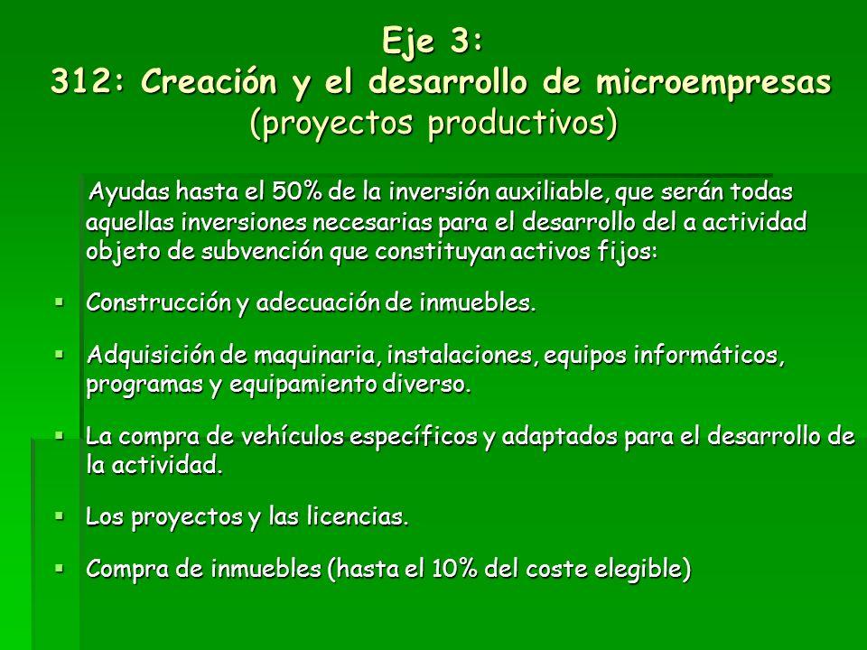 Eje 3: 312: Creación y el desarrollo de microempresas (proyectos productivos)