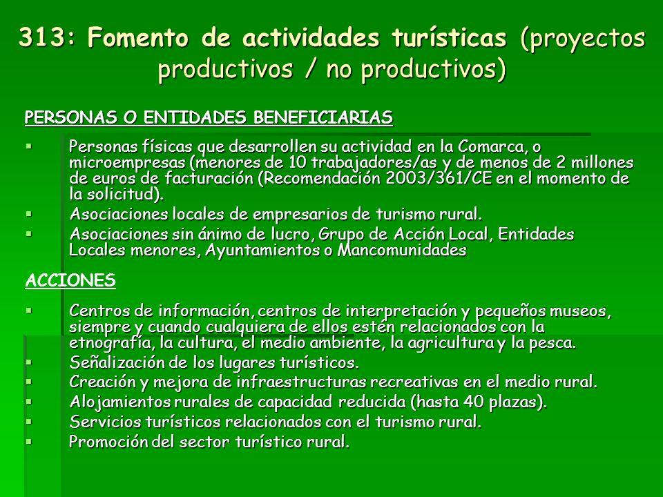 313: Fomento de actividades turísticas (proyectos productivos / no productivos)