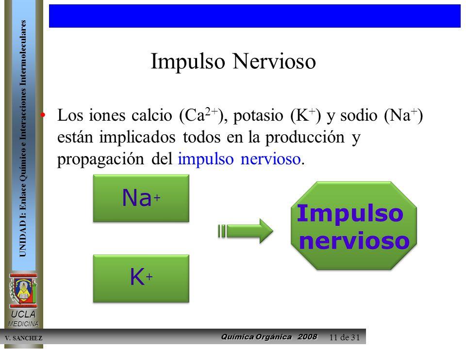 Impulso Nervioso Na+ Impulso nervioso K+