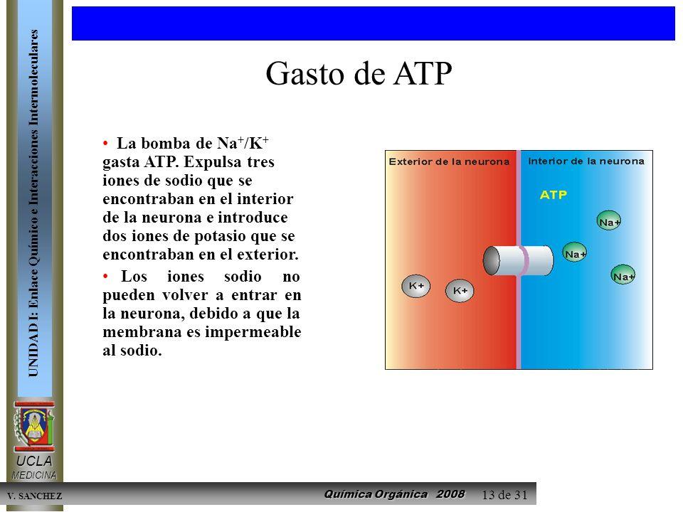 Gasto de ATP