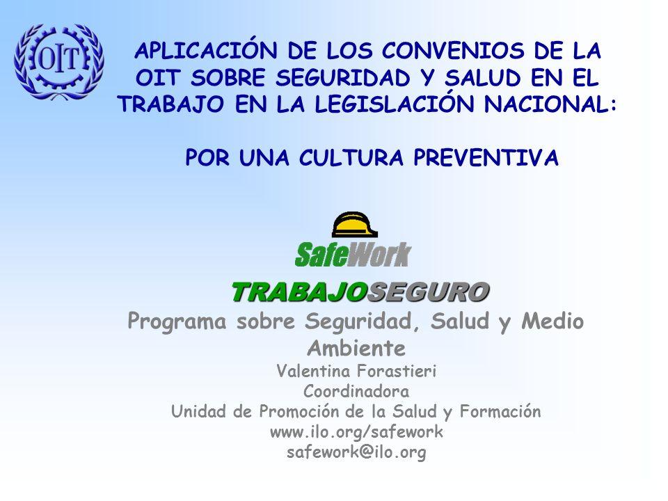 Programa sobre Seguridad, Salud y Medio Ambiente