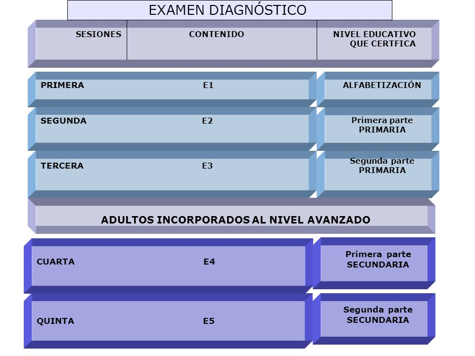 EXAMEN DIAGNÓSTICO ADULTOS INCORPORADOS AL NIVEL AVANZADO PRIMERA E1