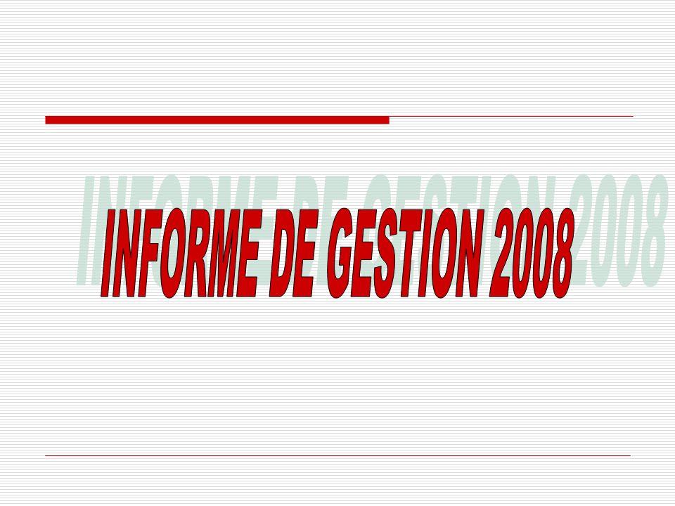 INFORME DE GESTION 2008