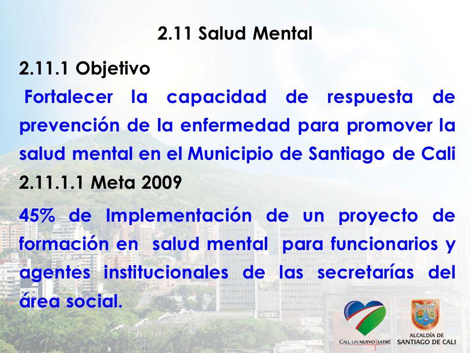 2.11 Salud Mental 2.11.1 Objetivo.