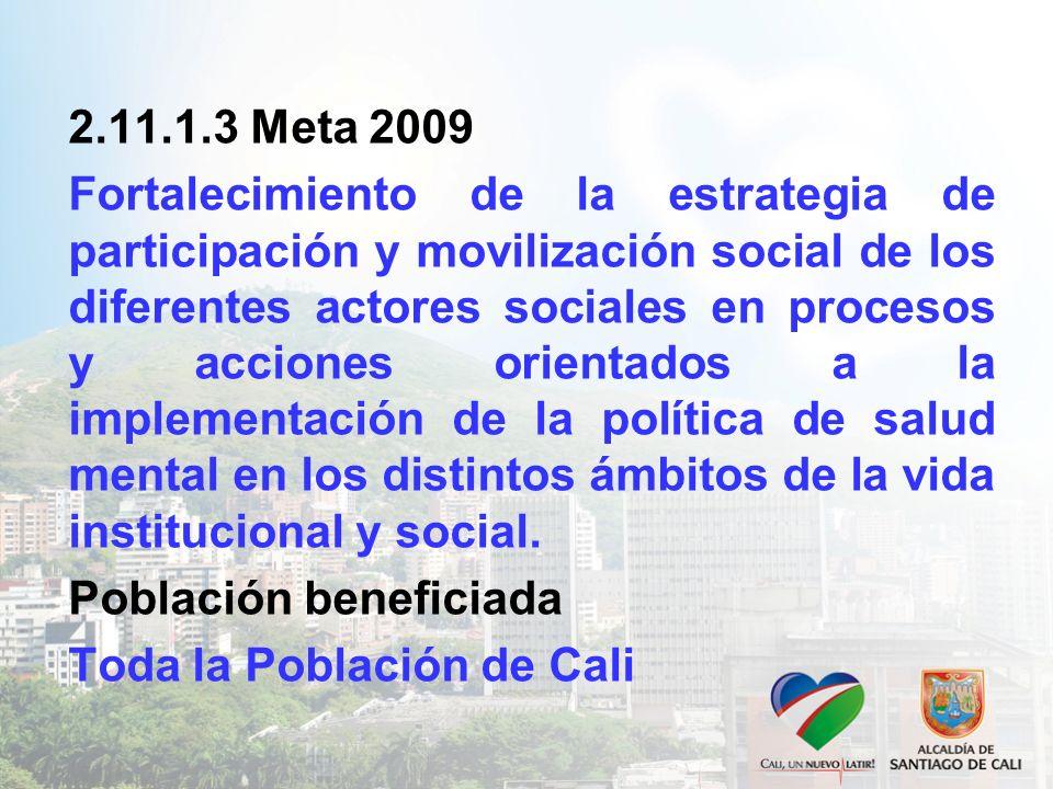 2.11.1.3 Meta 2009