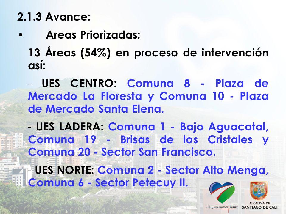 2.1.3 Avance: Areas Priorizadas: 13 Áreas (54%) en proceso de intervención así: