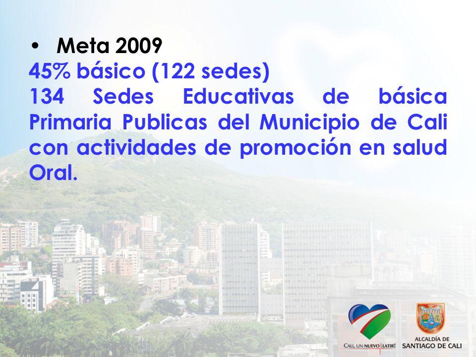Meta 2009 45% básico (122 sedes) 134 Sedes Educativas de básica Primaria Publicas del Municipio de Cali con actividades de promoción en salud Oral.