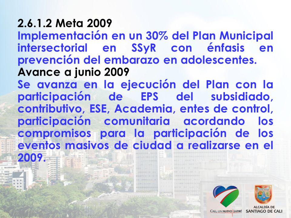 2.6.1.2 Meta 2009 Implementación en un 30% del Plan Municipal intersectorial en SSyR con énfasis en prevención del embarazo en adolescentes.
