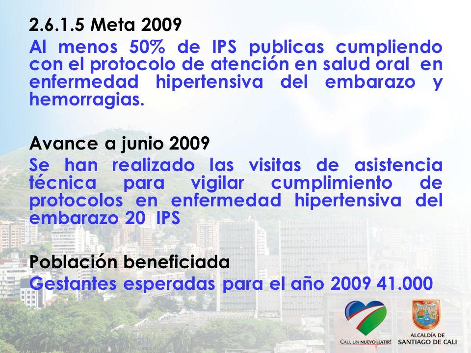 2.6.1.5 Meta 2009