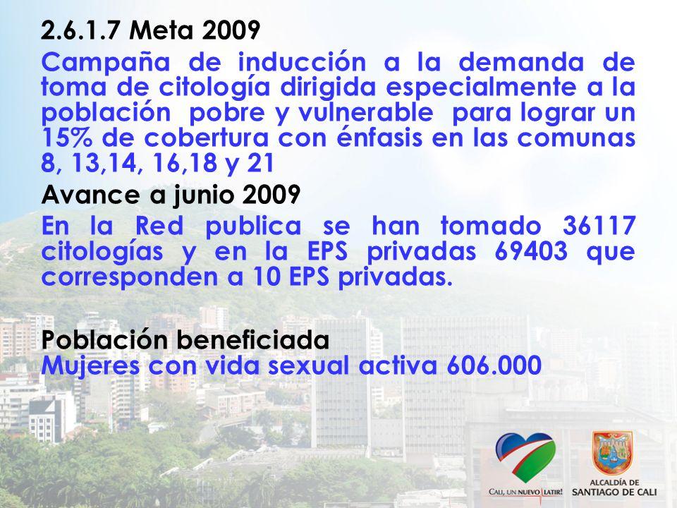 2.6.1.7 Meta 2009