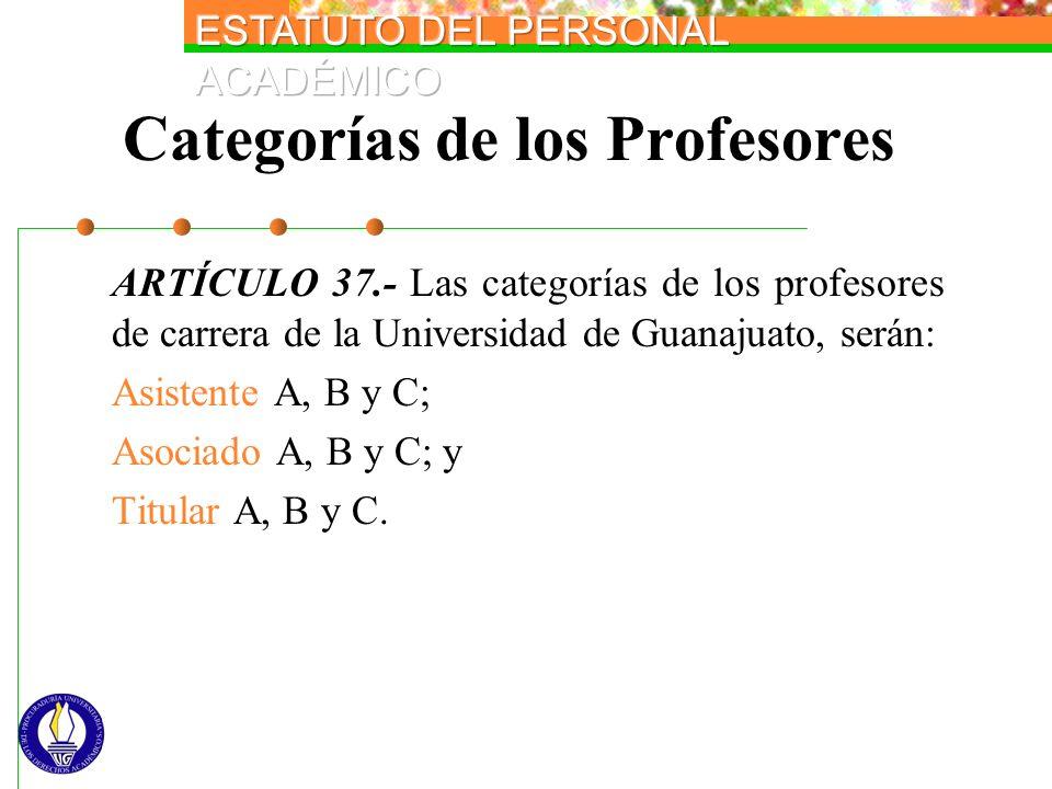 Categorías de los Profesores