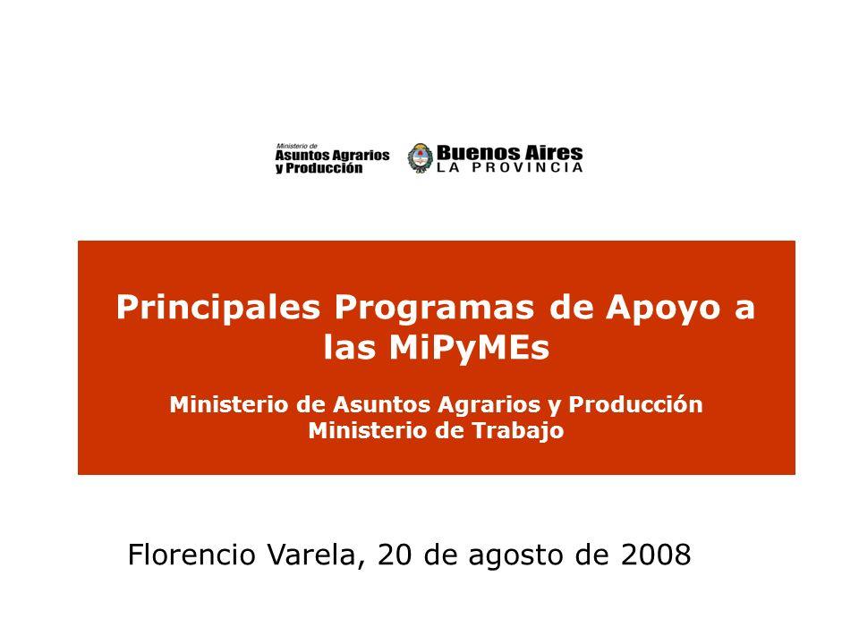 Principales Programas de Apoyo a las MiPyMEs Ministerio de Asuntos Agrarios y Producción Ministerio de Trabajo