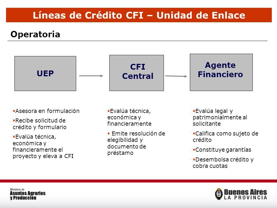 Líneas de Crédito CFI – Unidad de Enlace