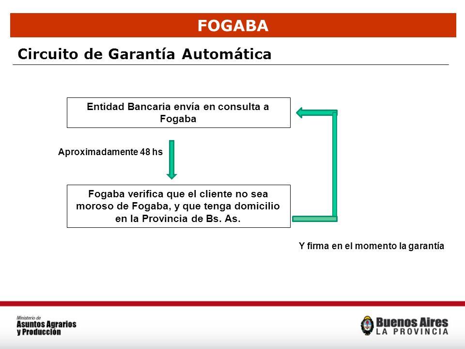 FOGABA Circuito de Garantía Automática