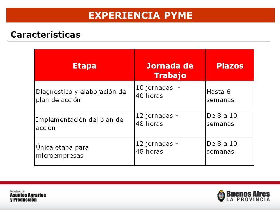 EXPERIENCIA PYME Características