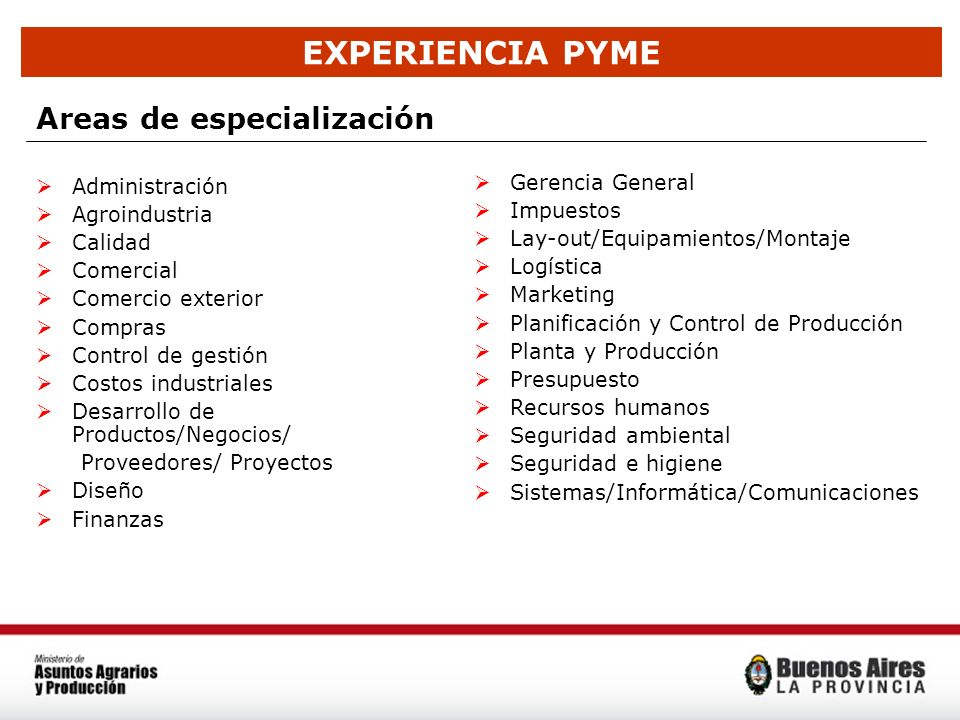 EXPERIENCIA PYME Areas de especialización Gerencia General