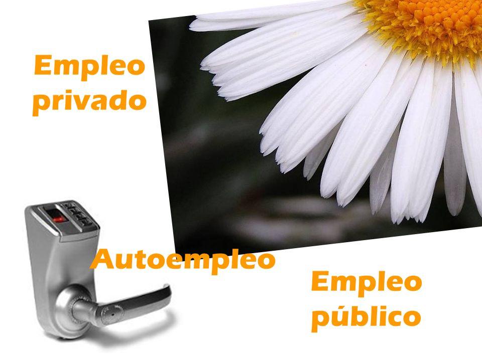 Empleo privado Autoempleo Empleo público