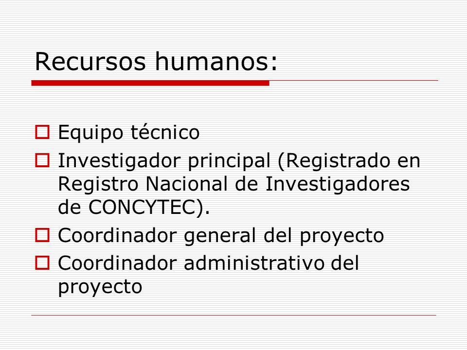 Recursos humanos: Equipo técnico