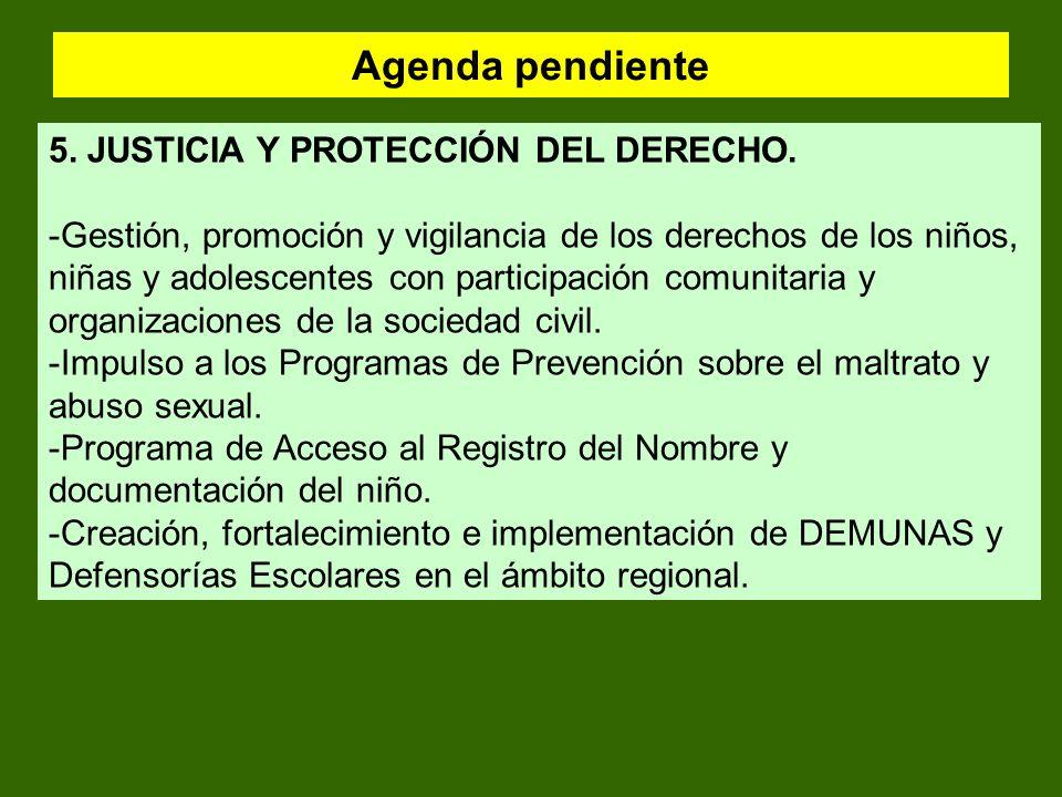 Agenda pendiente 5. JUSTICIA Y PROTECCIÓN DEL DERECHO.
