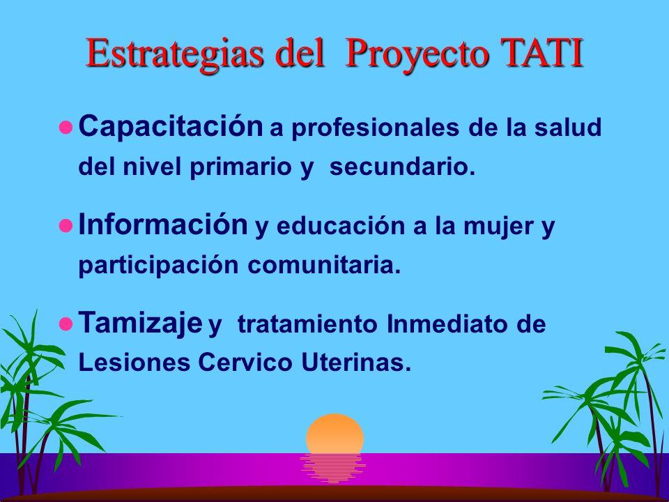 Estrategias del Proyecto TATI