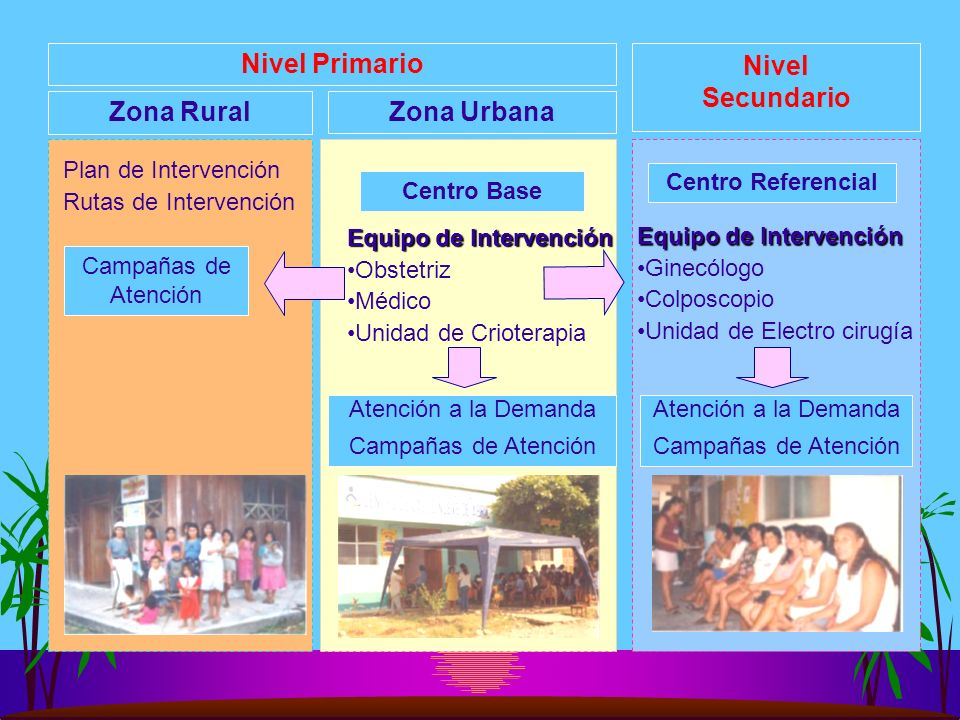 Zona Rural Nivel Primario Nivel Secundario Zona Urbana