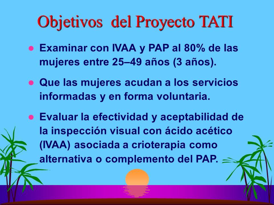 Objetivos del Proyecto TATI