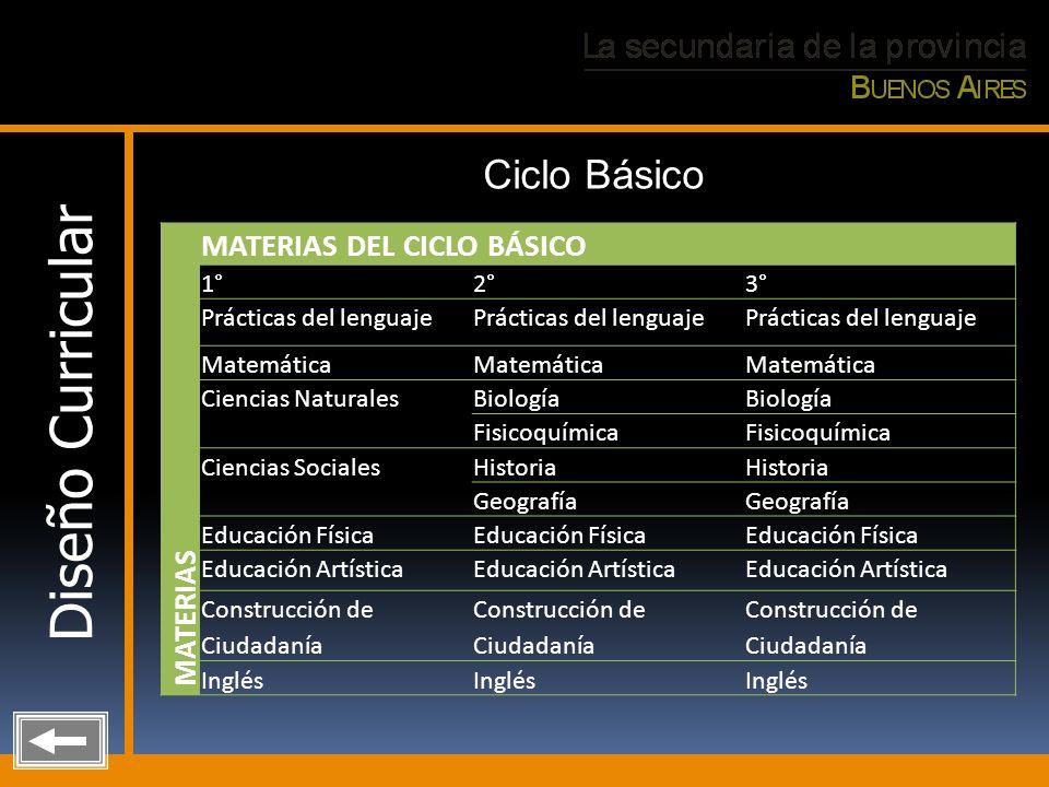 Diseño Curricular Ciclo Básico MATERIAS DEL CICLO BÁSICO MATERIAS 1°