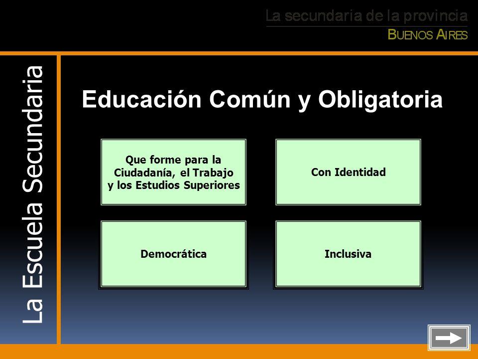 Educación Común y Obligatoria y los Estudios Superiores